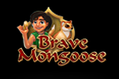 Brave Mongoose