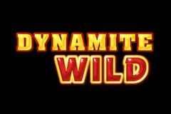 Dynamite Wild